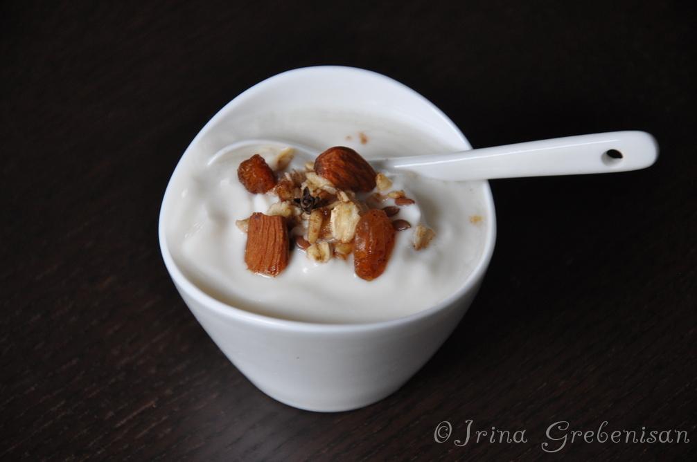Iaurt cu cereale homemade
