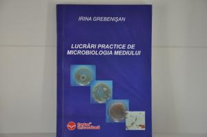 Micro LP